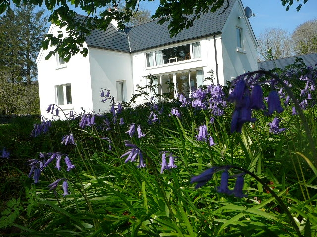 bluebells-alder-cottage