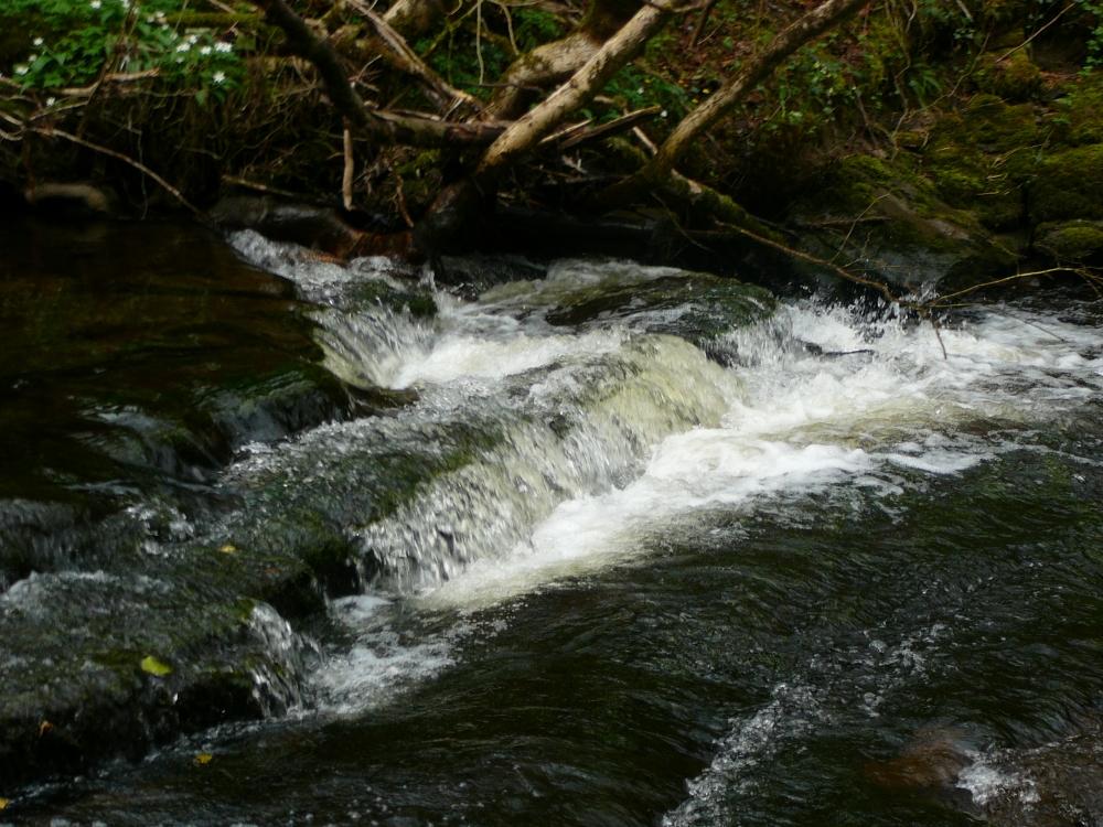 fowleys-falls