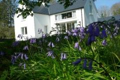 bluebells alder cottage